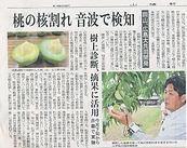 山陽新聞掲載