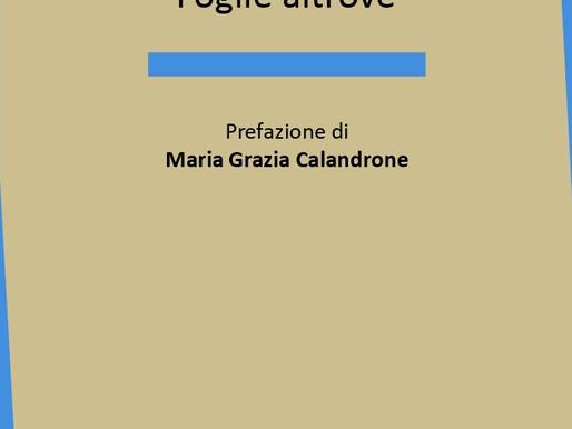 "Nota di lettura a ""Foglie altrove"" di Michele Paoletti"
