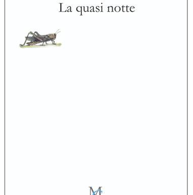 """Novità editoriale: """"La quasi notte"""" di Francesca Serragnoli"""