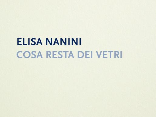 """Nota di lettura """"Cosa resta dei vetri"""" di Elisa Nanini"""