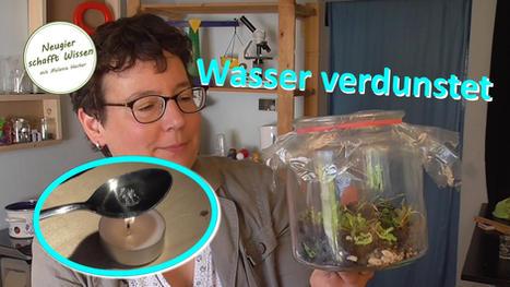 Lutscher und Flaschengarten - Wasser verdunstet - Experimente zum Wasserkreislauf für Kinder