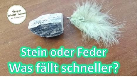 Stein oder Feder