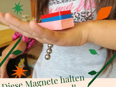 Magnete erforschen mit der 3. Klasse