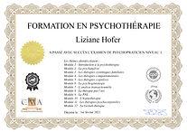 Psychothérapie Niveau 1.jpg