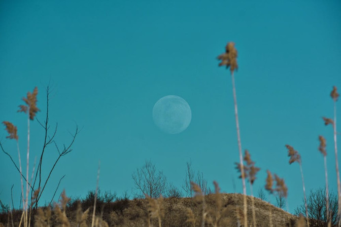 Weekly Enlightenment 25 - 31 October 2020 | ONCE IN A BLUE MOON