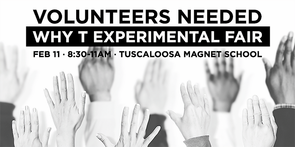 Volunteering at Why T Experimental Fair