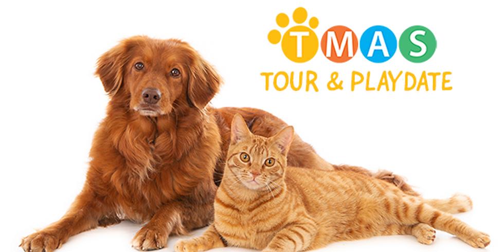 TMAS Tour & Playdate