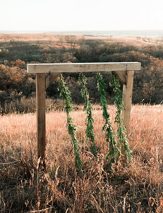 Custom Built Cedar Arch