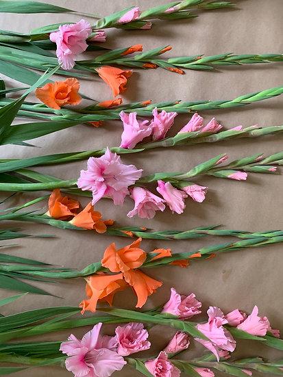 8 week Seasonal Floral Subscription