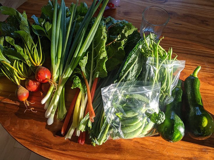 Garden Harvest Box