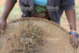 uganda 3.jpg
