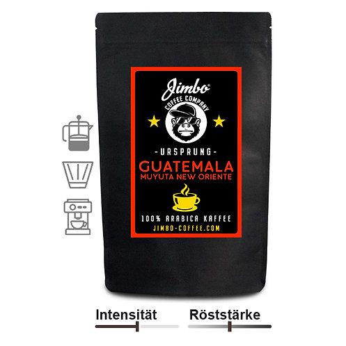 GUATEMALA MUYUTA NEW ORIENTE