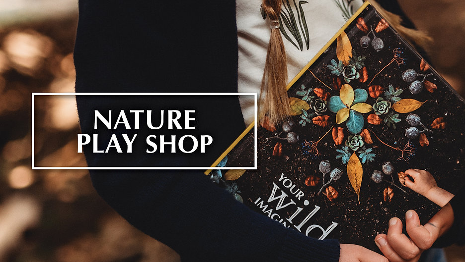 NaturePlayShop.jpg