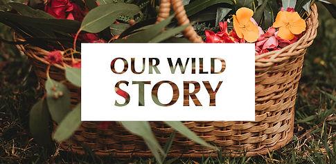 Our-story-Website_banner3.jpg