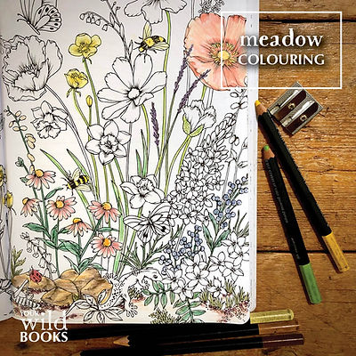Meadow-colouring-tile.jpg