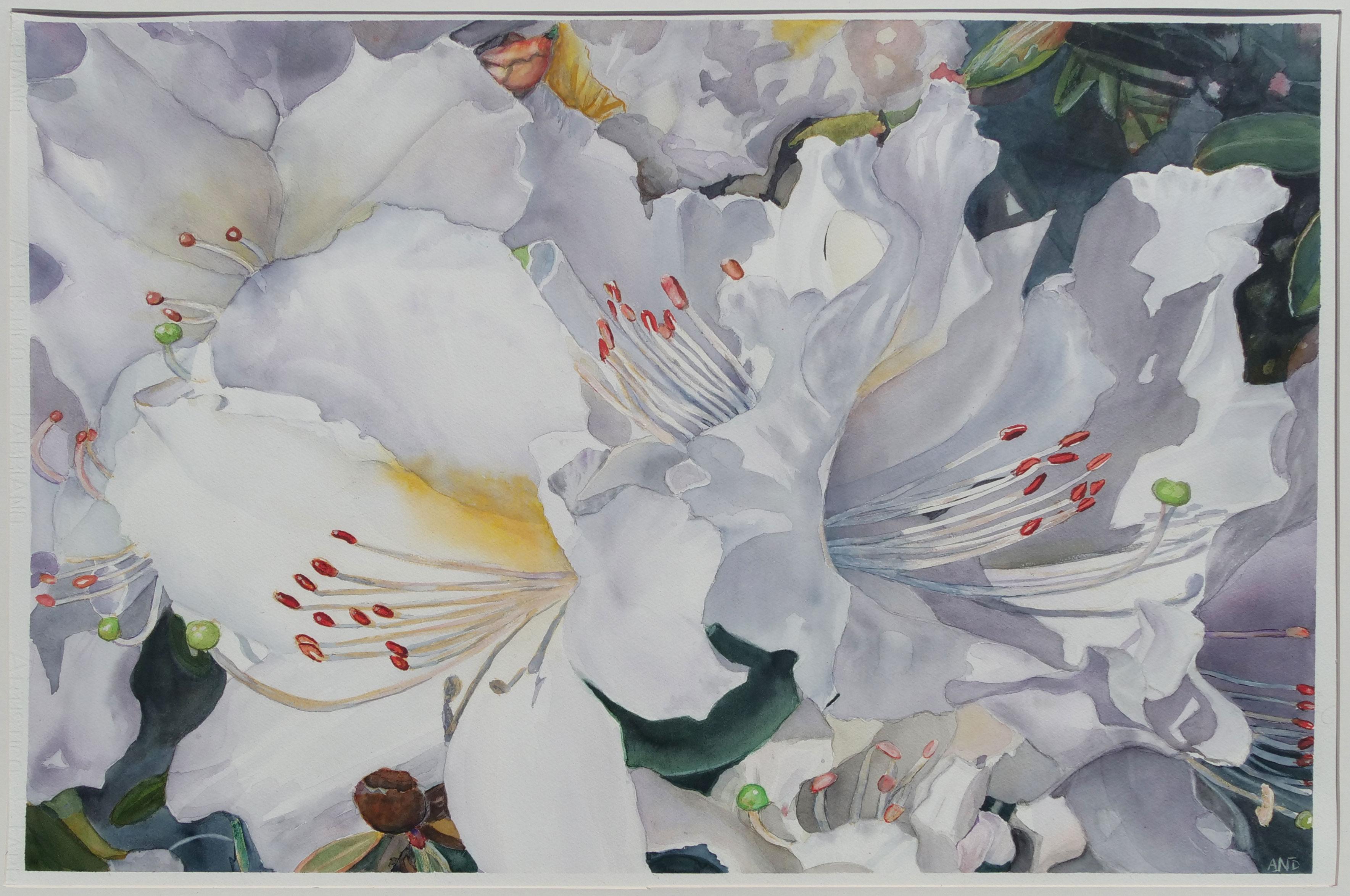 White Inspiration 3
