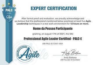 PALC-Expert-0 (3).png