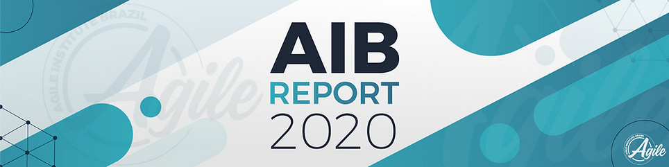 agile-report-2020-5.png
