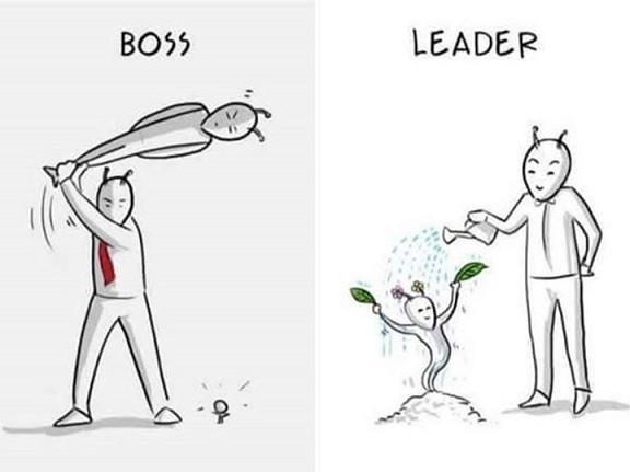 Chefe versus Líder