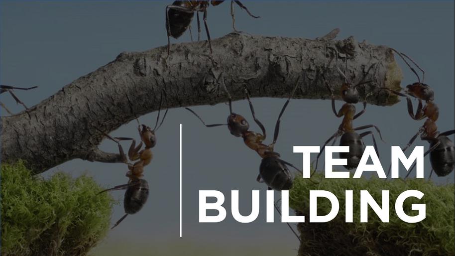 Por que Team Building é um dos melhores investimentos que você pode fazer?