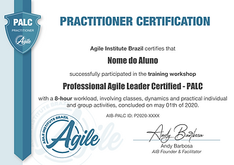 PALC-Practitioner.png