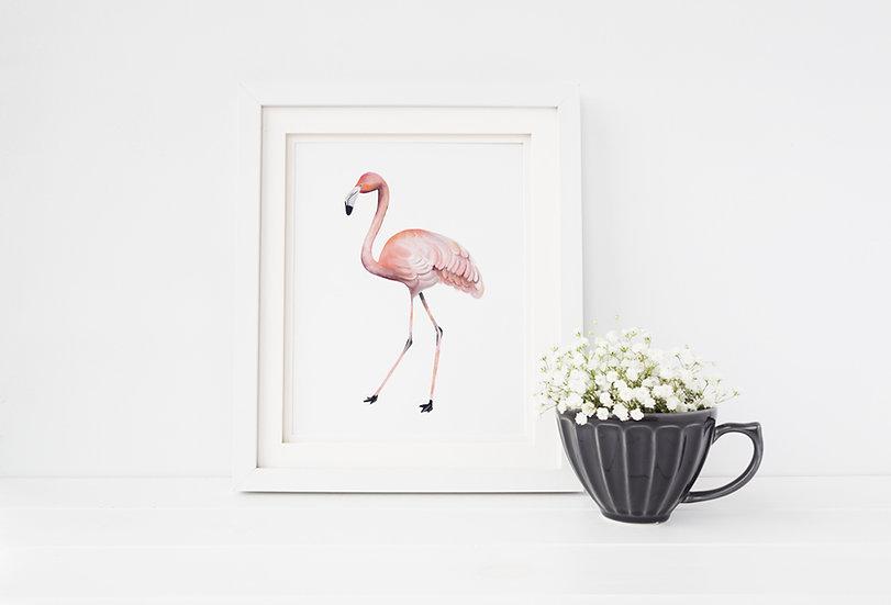 """Balance"" - Flamingo, 8x10 Giclee print"