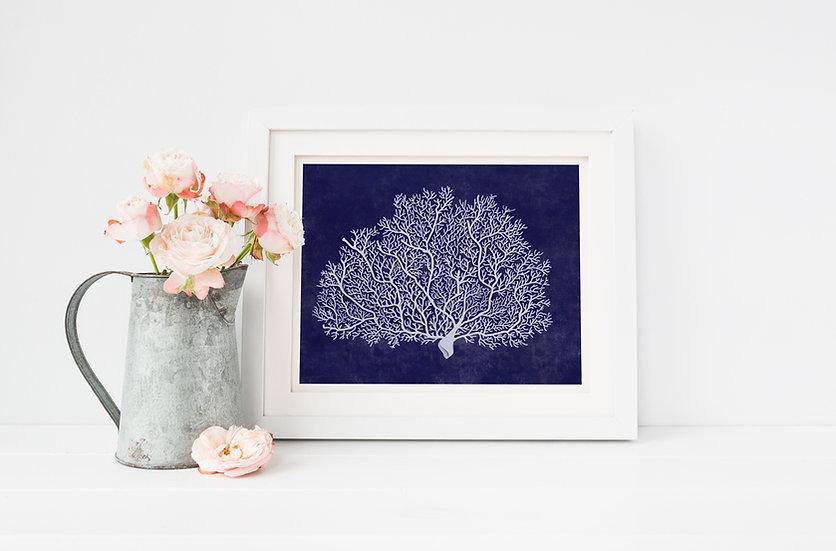 """Healing"" - White Coral, 8x10 Giclee print"