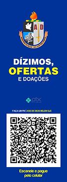 PIX OFERTA CONTA AD.png