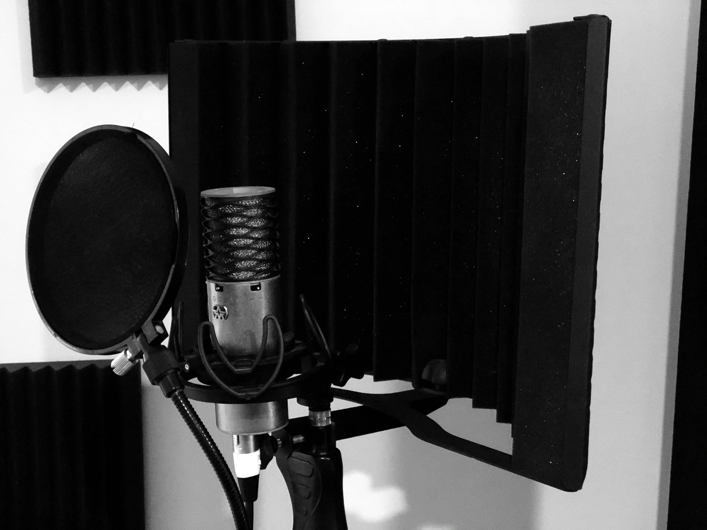 Voice Reel Recording