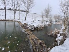 Al mal tiempo ❄️ bolazos de nieve