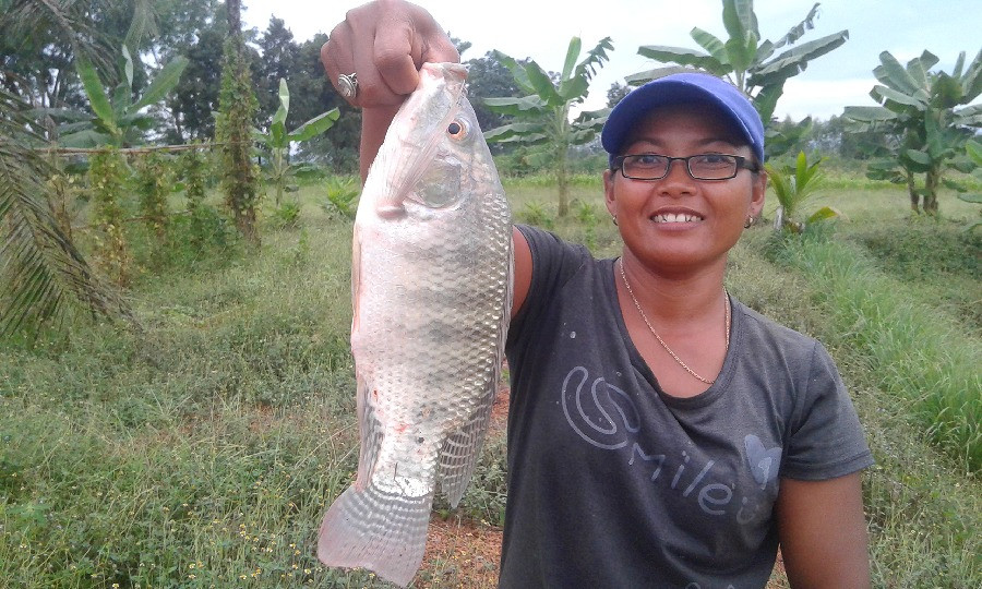 Holding up a tilapia grown on our farm in Thailand.