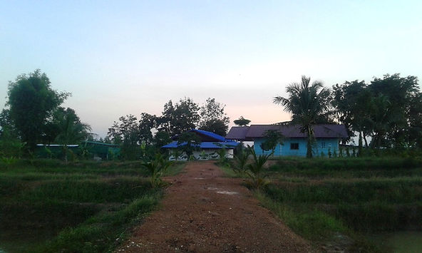 Our rural Thailand homestead offering fa