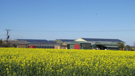Allotment_Farm_Ely_150kW.jpg