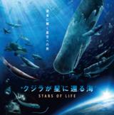 プラネタリウム「クジラが星に還る海 -STARS OF LIFE-」