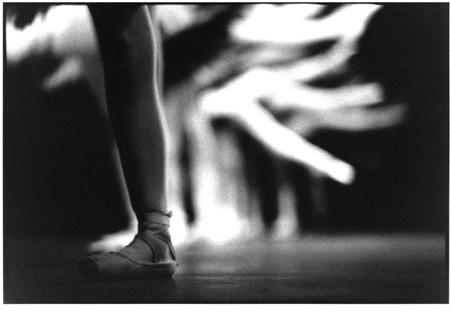 A Leg of Many