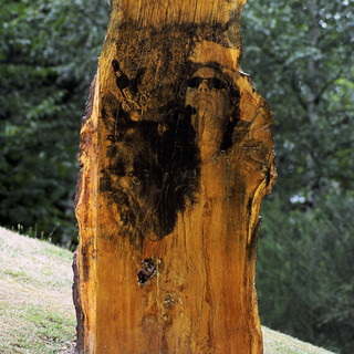 One Man & His Dog 2002 © Gillian Allard 2002  Commission: Sculpture In The Park walking trail - Christchurch Park, Ipswich, Suffolk. Liquid photo emulsion on oak. 4 ft x 2.5 ft