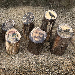 Suffolk ArtLink commission, 2020. Risby village project  The ten photo wooden photo pieces make up a walk that connects the photos and people to 'place'.   Opened to residents during lockdown & is now open to the general public.