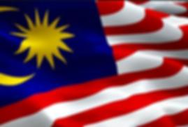malaysian flag.png