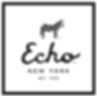 echo-design-group logo.png