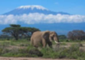 Kenia 2.jpg