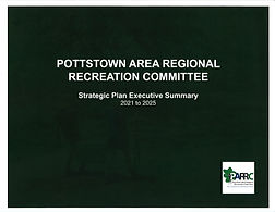 Strategic Plan Exec Summary Cover Page.j