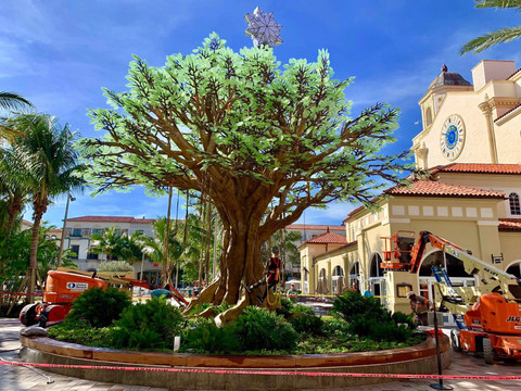 Rosemary Square unveils Wishing Tree in revitalized downtown West Palm Beach