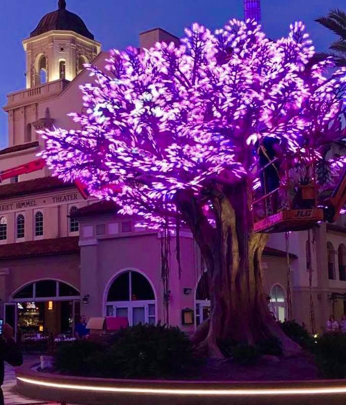 Wishing Tree | Rosemary Square WPB
