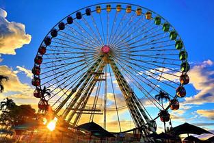 """""""An Earthly A-Fair""""at the South Florida Fair in Palm Beaches"""