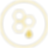 JH-icons 2_CMYK_Wellness.png