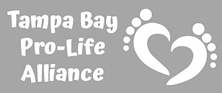 TBPLA Website Gray Logo.png