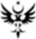 Turkuaz_Mobil_Sağlık_Logo.png