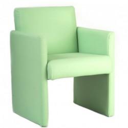 fauteuil-vert-eliade