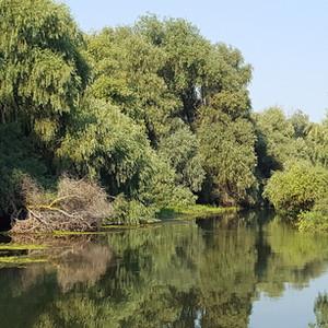 Canal in Delta Dunarii