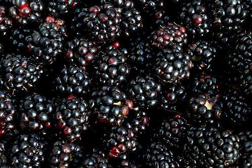 Blackberry Cordials